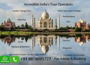 golden triangle trip india